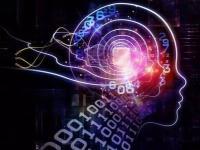 埃德蒙顿开始了MEDO.ai人工智能增强型3D超声的研究