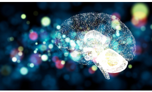 麻省理工学院的单个芯片上拥有数万个人工脑突触